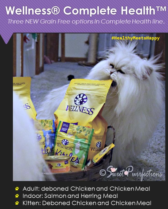 Brulee biting into Wellness® Complete Health™ bag