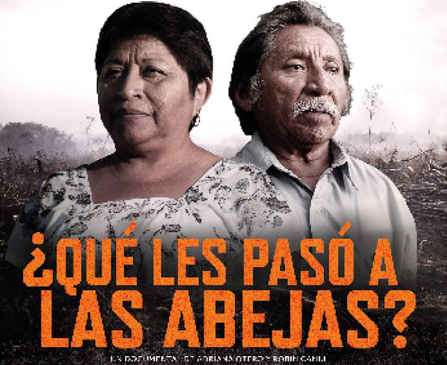 """""""Nuestras vidas están en peligro, nuestras tierras están en peligro, todo lo que nos rodea está en peligro"""", sentencia el avance de la película. Imagen. Cartel de la película."""