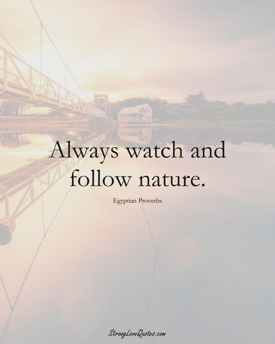 Always watch and follow nature. (Egyptian Sayings);  #MiddleEasternSayings