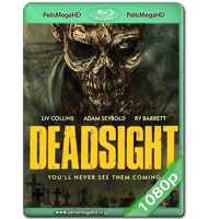 DEADSIGHT (2018) WEB-DL 1080P HD MKV ESPAÑOL LATINO