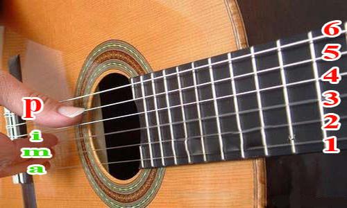 dan guitar danh cho nguoi moi hoc