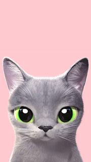 gambar wallpaper bertemakan kucing