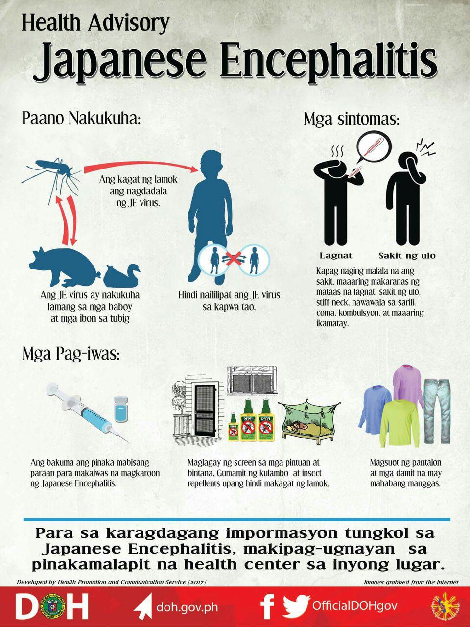 The Department of Health (DOH) urged the public to intensify their efforts against getting mosquito bites, following 9 deaths caused by Japanese encephalitis (JE) this year - 7 from Central Luzon, one from Ilocos, and one from Calabarzon.  There are currently 133 patients suspected of having the virus, and almost 60 of them already confirmed. The disease could be prevented by vaccine, but once infected, there is no cure for the virus itself except the patient's own immune system. Only the symptoms of the disease may be treated. In the Philippines, the vaccine is currently only available commercially. Government centers will have the vaccine next year.  Here's what you need to know about this potentially deadly disease and how to protect yourself from it.  What is Japanese encephalitis? Japanese encephalitis virus (JEV) is a flavivirus related to dengue, yellow fever and West Nile viruses, and is spread by mosquitoes. Not all people infected with JEV will get sick or show symptoms. In people who show symptoms, the case-fatality rate can be as high as 30%. There is no cure for the disease. Treatment is focused on relieving severe clinical signs and supporting the patient to overcome the infection. Safe and effective vaccines are available to prevent JEV. The first case of Japanese encephalitis viral disease (JE) was documented in 1871 in Japan. 24 countries in South-East Asia and Western Pacific regions have JEV transmission risk, which includes more than 3 billion people.  What are the symptoms of JE? Most JEV infections are mild (fever and headache) or without apparent symptoms. Approximately 1 in 250 infections results in severe illness requiring hospitalization. It takes 5 to 15 days after the bite of an infected mosquito to develop these symptoms. Severe disease is characterized by rapid onset of high fever, headache, neck stiffness, and disorientation. Later symptoms include swelling around the brain (encephalitis), coma, seizures, spastic paralysis and ultimately death.  What are the effects of the disease? Among those who survive a severe case of JE, 20%–30% suffer permanent intellectual, behavioral or neurological problems such as paralysis, recurrent seizures or the inability to speak.  How is the virus transmitted? JEV is transmitted to humans through bites from infected mosquitoes of the Culex species (mainly Culex tritaeniorhynchus). Humans cannot transfer the virus to others, even through mosquito bites. The virus is commonly transmitted between mosquitoes, pigs and/or water birds.  The disease is mostly found in rural and sub-urban settings, where humans live near to animals. In the tropical and subtropical regions, transmission can occur year-round but often intensifies during the rainy season and pre-harvest period in rice-cultivating regions.  What to do if you get bitten by a mosquito, feel sick or may have JE? Avoid scratching mosquito bites. Apply hydrocortisone cream or calamine lotion to reduce itching. Go the the clinic and inform the doctor of your circumstance - travel location, insect bites. Use Paracetamol (acetaminophen). Do not take pain relievers that contain aspirin and ibuprofen (Advil), it may lead to a greater tendency to bleed.  How is the disease diagnosed? Individuals who live in or have traveled to an area where there are cases of JE are reported, and experience some symptoms are considered a suspected JE case. Verification of the infection requires a blood (serum) test. But cerebrospinal fluid is preferred.  How is the disease treated? There is no antiviral treatment for patients with JE. Treatment is provided only to relieve the symptoms of the disease and help stabilize the patient to overcome the virus. Just like dengue, overcoming the JE virus gives the patient a certain level of immunity for the JEV.  How to prevent getting infected with JEV? Safe and effective JE vaccines are available to prevent disease. There are 4 main types of JE vaccines currently in use: inactivated mouse brain-derived vaccines inactivated Vero cell-derived vaccines live attenuated vaccines live recombinant vaccines Personal preventive measures include the use of repellents, long-sleeved clothes, coils and vaporizers.    sources: World Health Org., ABS-CBN, Center for Disease Control