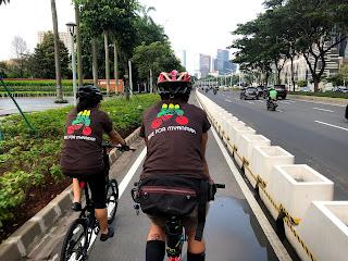 Dilema Planter Box dan Pesepeda Road bike