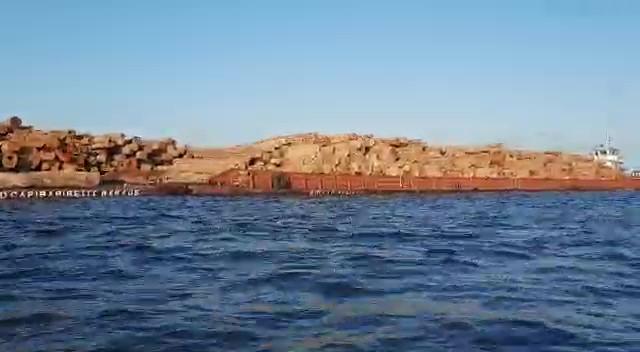 Jornalista flagra comboio de balsas com toras de madeira descendo o rio Arapiuns; vídeo