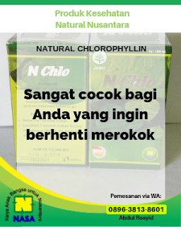 Natural Chlorophyllin Pembersih Nikotin Racun Dalam Tubuh