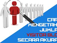 2 Cara Melihat Jumlah Visitor Blog Secara Akurat