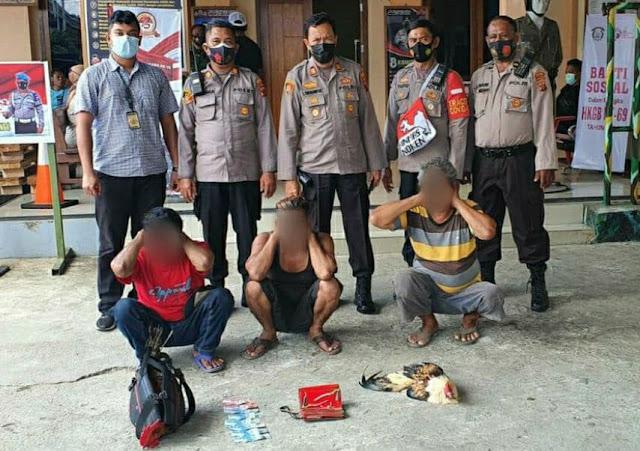 Main Judi Sabung Ayam di Pasar Yotefa, 3 Pria Diamankan Polisi