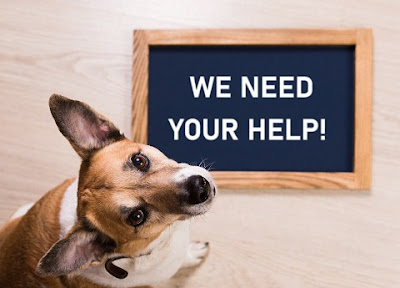 Asking and Offering Help – Pengertian, Penggunaan, Contoh Dialog