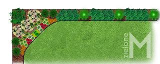 Projekt cienistej rabaty, żywopłot wzdłuż płotu drewnianego, projekt ogrodu, liściasty żywopłot