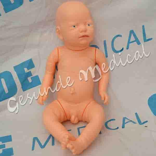 dimana beli torso bayi baru lahir