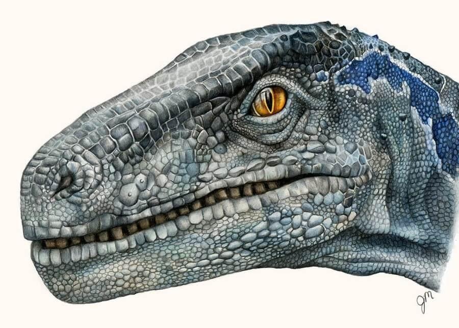 12-Velociraptor-Jurassic-Park-Julianna-www-designstack-co