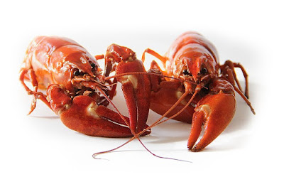 Excelente receta de cocina de cangrejos de rio a la riojana