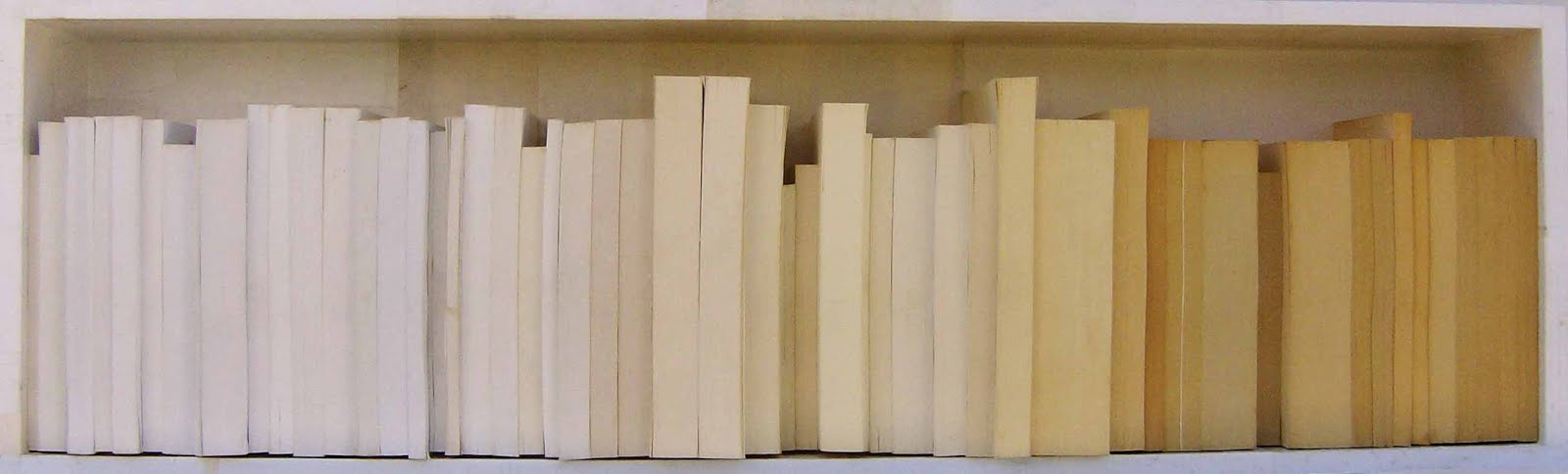 embryo very young (53 books - 30x100cm) PVP1600€