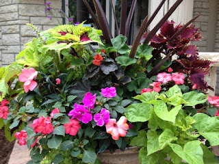 Tired of Waiting! Instant Garden! Container Plants!