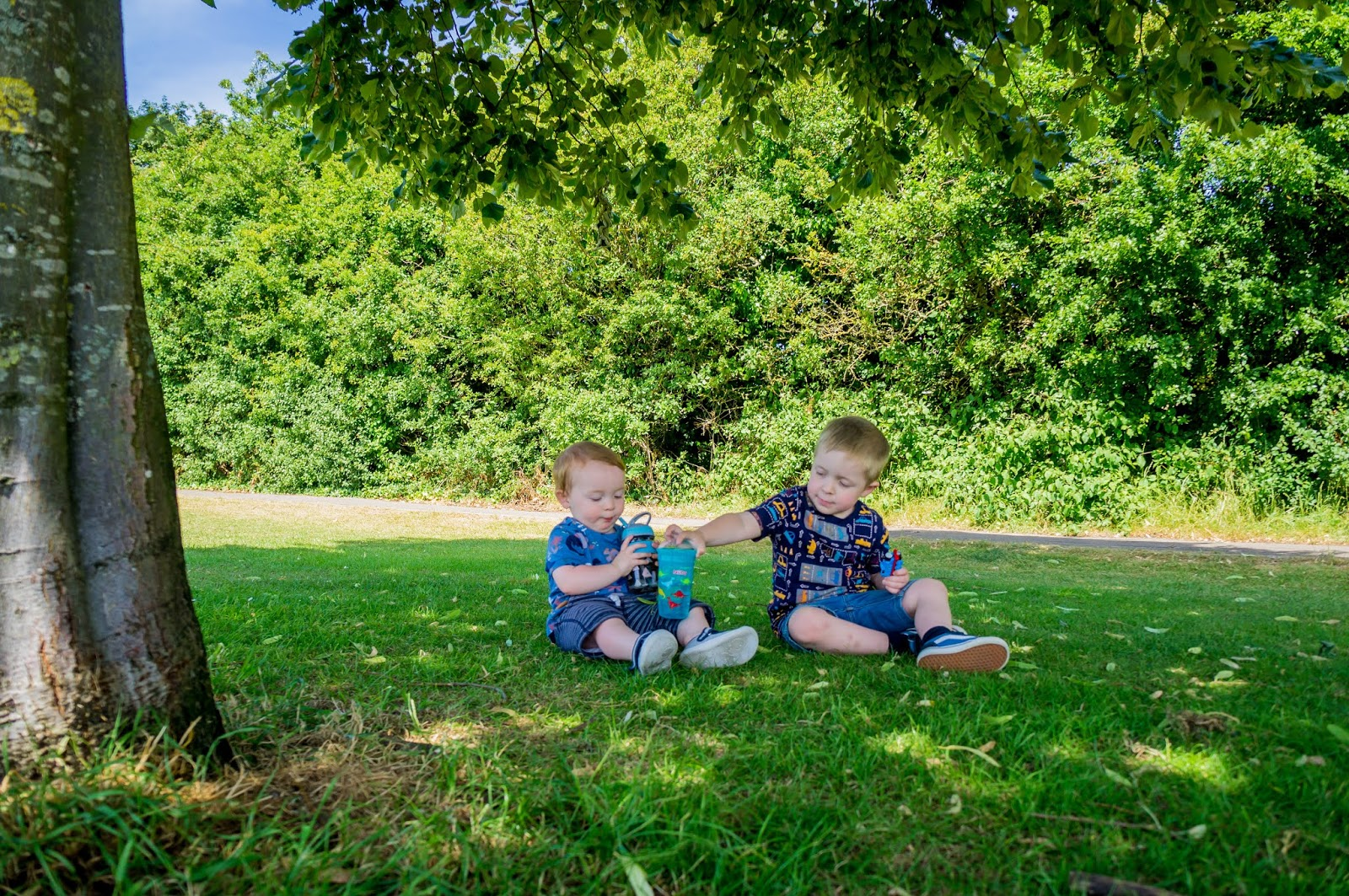 two boys sitting on grass under a tree in a park