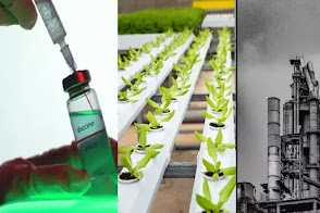 Types of biotechnology in hindi