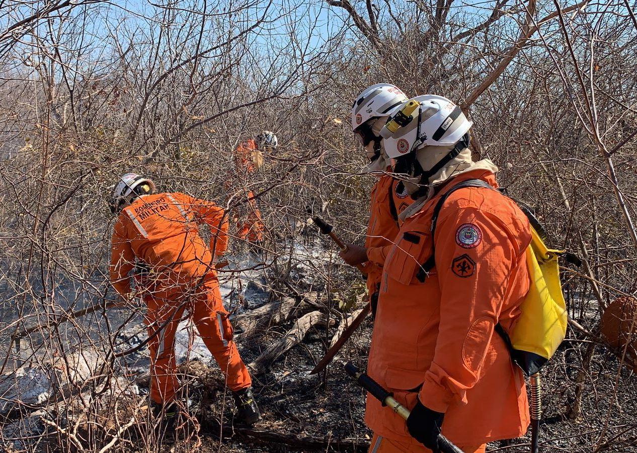 Esforço coletivo da Prefeitura, Inema, Ibama, Bombeiros e  Prevfogo segue combatendo queimadas em Barreiras