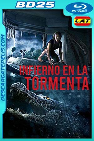 Infierno en la tormenta (2019) 1080p BD25 Latino – Ingles