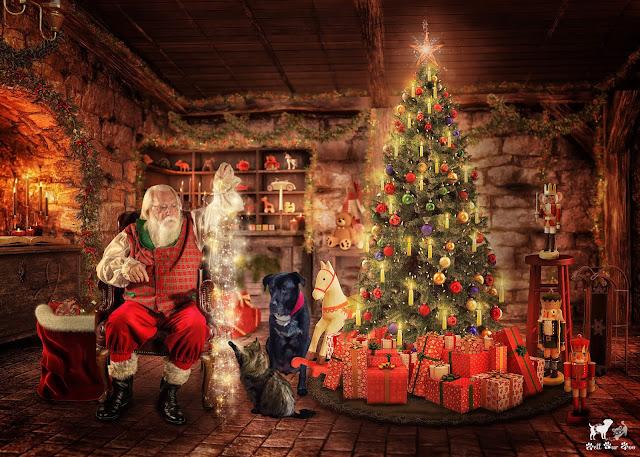 Santa's Magic (©Jenny Bell @ Bell Fur Zoo)