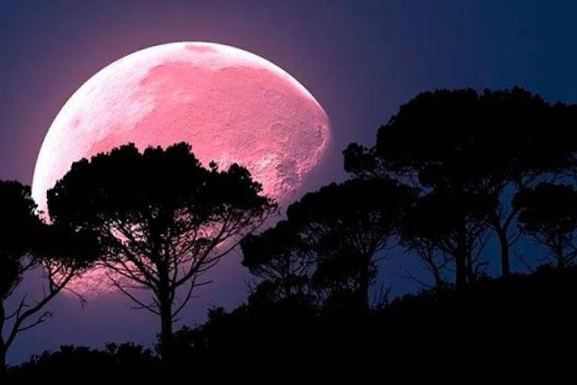 Qué es y cómo ver la superluna rosa de abril