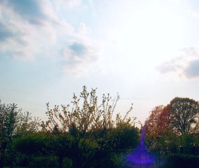 Fotos vom Frühling