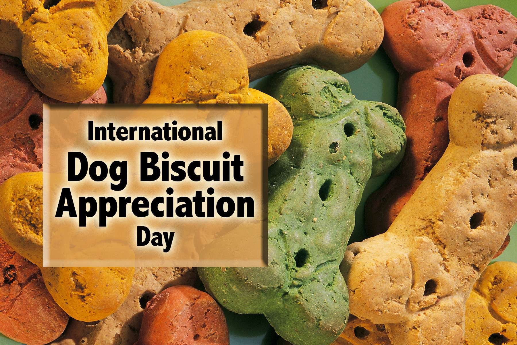 International Dog Biscuit Appreciation Day Wishes For Facebook