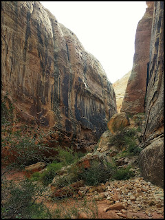 Narrows Section of  Grand Wash Capital Reef