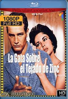 La Gata Sobre El Tejado De Zinc [1958] [1080p BRrip] [Latino-Inglés] [GoogleDrive] RafagaHD