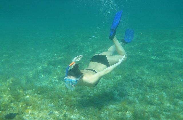 Something About Travel and Snorkeling