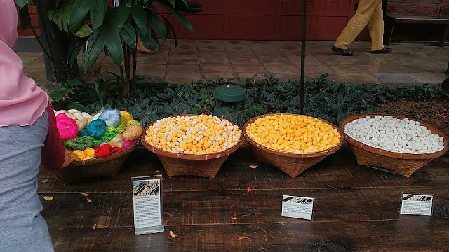 jim thompson, bangkok, museum, wisata, thailand
