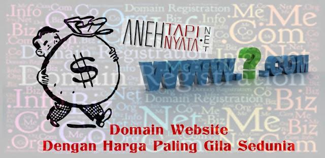 Nama Domain Website Dengan Harga Paling Gila Sedunia