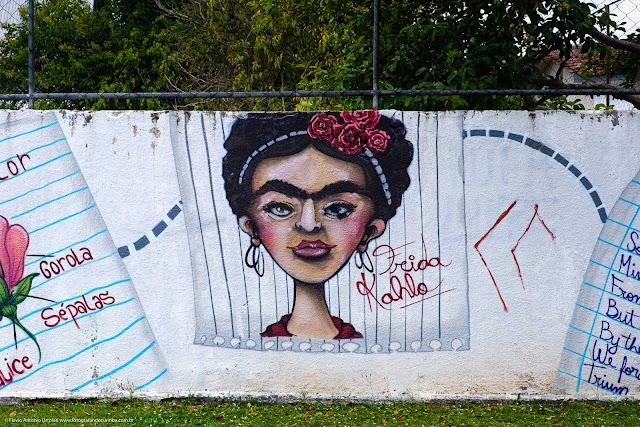Grafite em muro de escola retratando Frida Kahlo
