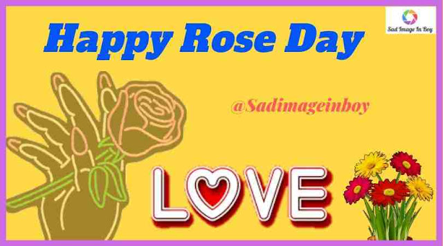 Rose Day Images | rose day 2019, rose day image, rose day date, happy rose day 2019, rose images with love