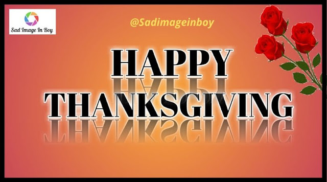 Happy Thanksgiving Images | funny thanksgiving pictures, thanksgiving images and quotes, funny thanksgiving gif