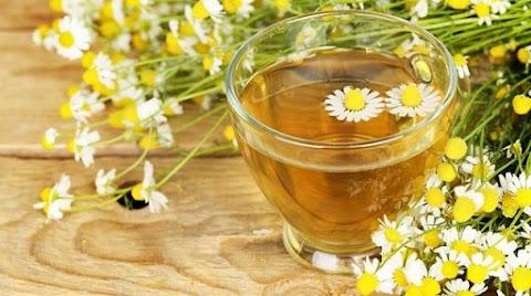 Kamilla: ezért főzzünk teát belőle