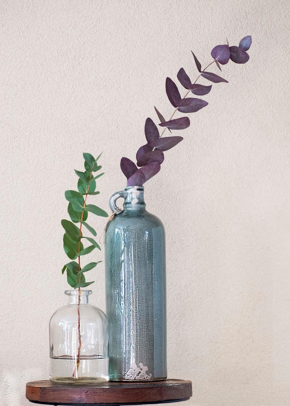 Eucalyptus op kleur brengen