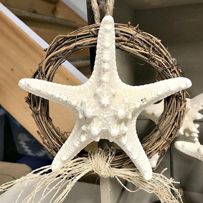 Beautiful Coastal Starfish Projects
