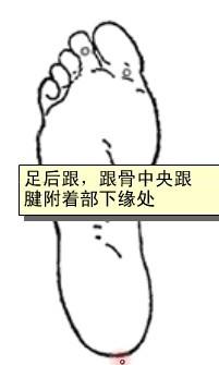 女膝穴位 | 女膝穴痛位置 - 穴道按摩經絡圖解 | Source:zhongyibaike.com
