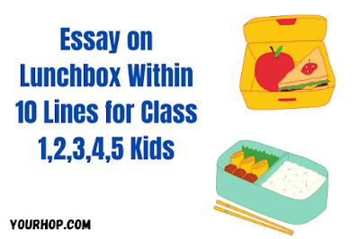 Essay on Lunchbox