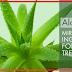 Apakah Produk Perawatan Kulit Herbal Dapat Menghasilkan Uang Untuk Anda?