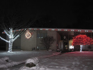 commercial Christmas light installation Ann Arbor