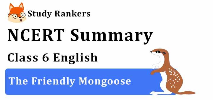 The Friendly Mongoose Class 6 English Summary