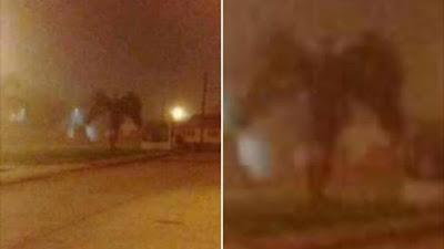 Aparição de monstro com asas em uma rua no Arizona