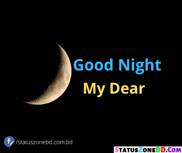 Romantic Good Night SMS For GF Bengali | New Good Night Romantic SMS | Shuvo Ratri SMS