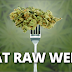 Report: Eating Raw Weed Prevents Bowel Cancer, Fibromyalgia and Neuro-degenerative Diseases