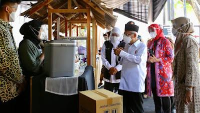 Wapres Puji 'Jagoan UMKM' Banyuwangi