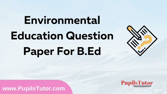 Environmental Education Question Paper For B.Ed 1st And 2nd Year And All The 4 Semesters In English, Hindi And Marathi Medium Free Download PDF | Environmental Education Question Paper In English | Environmental Education Question Paper In Hindi | Environmental Education Question Paper In Marathi