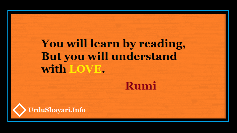 Reading , Rumi Love Quotes, You will learn by reading but you will understand with love