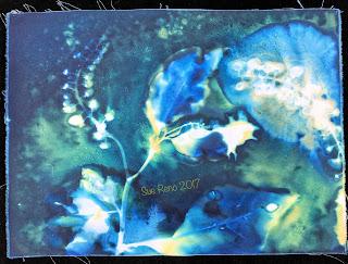 Wet Cyanotype_Sue Reno_Image 185
